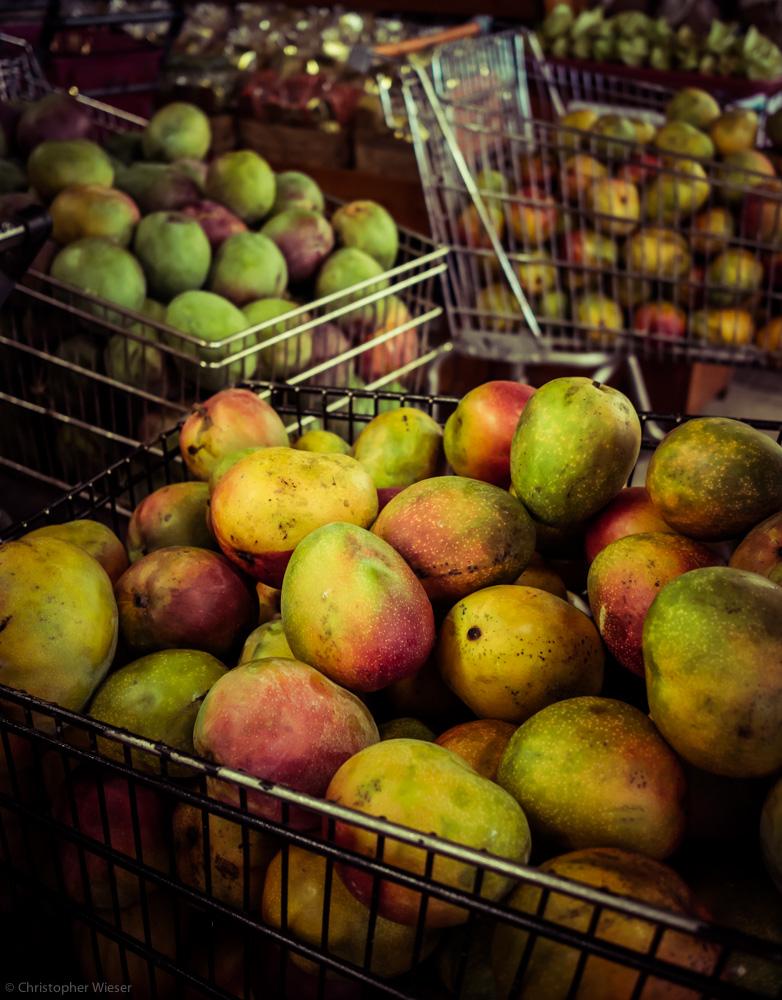 robertmangoes